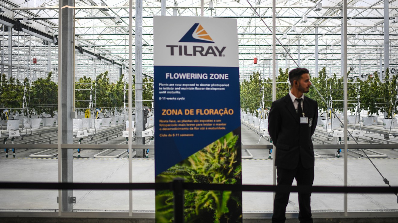 Marijuana Watch: Tilray says coronavirus has not materially impacted its capability to offer marijuana