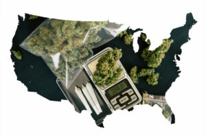 Aurora Cannabis Lastly Gets In the U.S. –