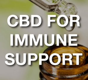 CBD For Immune Assistance: Protecting Elders Through Lab Checked CBD